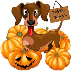 Poster Draw Halloween Dachshund Tricks or Treats Cute Cartoon Character Vector Illustration
