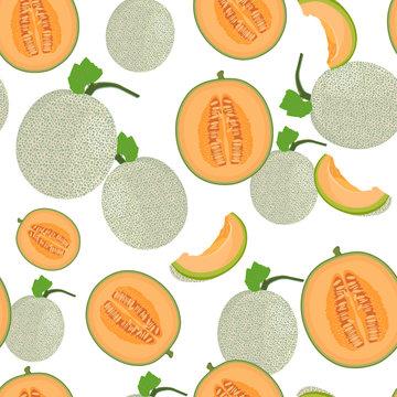 Melon whole and half seamless pattern on white background, Fresh cantaloupe melon pattern background, Fruit vector illustration.