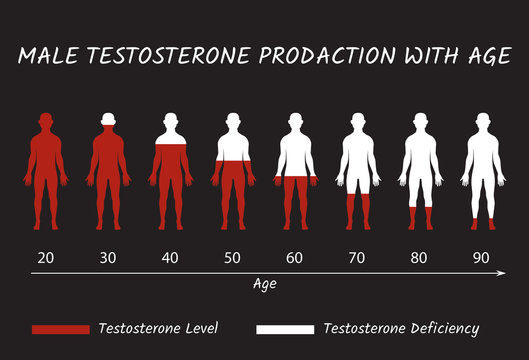Male Testosterone Prodaction with Age.
