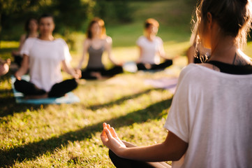 Group of young sporty woman practicing yoga lesson with instructor, sitting in lotus pose. Focus of camera at teacher rear view. Photo from back of instructor. Group of meditating people in background