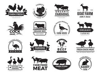 Farm animals. Business logo with domestic animals cow chicken goat healthy food symbols vector farm collection. Cow silhouette, chicken and sheep meat illustration