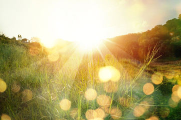 Poster Spring Beautiful sunrise in the mountain..Meadow landscape refreshment with sunray and golden bokeh.