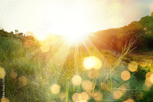 Wall mural Beautiful sunrise in the mountain..Meadow landscape refreshment with sunray and golden bokeh.