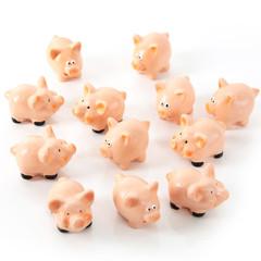 Kleine mini Glücksschweine in rosa isoliert - Gruppe bzw. Sammlung