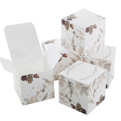 Weihnachten Box oder Schachtel in braun weiß isoliert