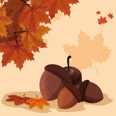 hello autumn poster with nuts and leafs