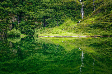 Forest reflections in the calm waters of NÊr¯yfjord, on UNESCO's World Heritage List, Norway.