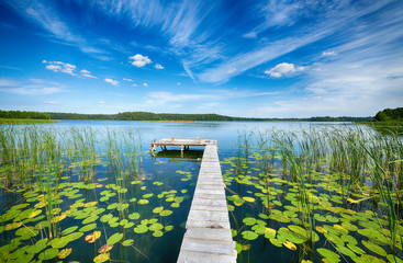 Fotobehang Waterlelies Beautiful summer day on masuria lake district in Poland