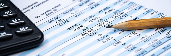 Business composition. Financial analysis - income statement, business plan