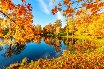 Golden autumn (fall) in Alexander park, Tsarskoe Selo (Pushkin) Saint Petersburg, Russia