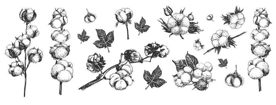 Cotton flowers composition