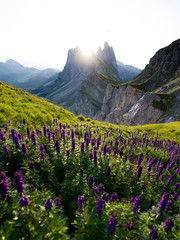Beautiful rugged Seceda mountain range at sunrise in South Tyrol, Italy