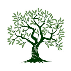 Olive tree on white background. Vector Illustration and concept pictogram.