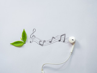 Wall Mural - Leaves headphones and music notes.Music from nature concept