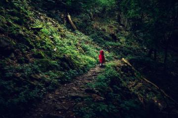 Kleines Kind mit roter Jacke läuft durch einen dunklen Wald