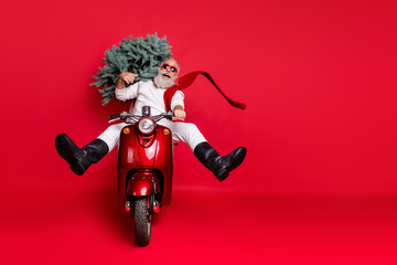 Full size photo of enjoying hipster drive bike carry fir tree have eyewear eyeglasses wear white pullover pants trousers boots isolated over red background