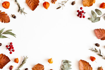 Autumn composition. Physalis flowers, eucalyptus leaves, rowan berries on white background. Autumn, fall, thanksgiving day concept. Flat lay, top view, copy space Wall mural