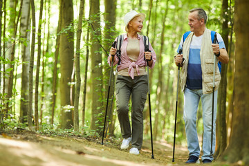 Healthy senior hikers exercising together they walking in the forest during their hike Wall mural