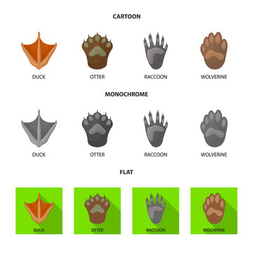 Vector design of step and walk sign. Collection of step and fauna vector icon for stock.