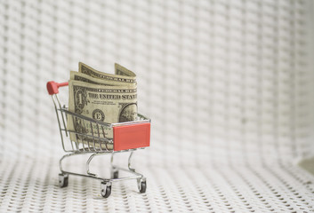 Shopping cart with American dollar banknote