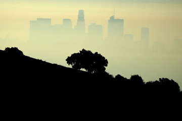Downtown Los Angeles is seen through the morning marine layer in Los Angeles