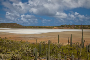 Salt Pan in Washington Slagbaai National Park, Bonaire