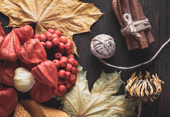 Autumn background and autumn nature berries, pumpkins and flowers on the wooden background