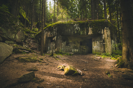 Old and abandoned bunker in forest covered with moss
