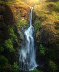 Wall Mural - Waterfall in autumn forest at sunset in Nepal. Colorful natural landscape with waterfall with blurred water in mountains, green trees and grass on the rocks, yellow sunlight in fall. Beautiful nature