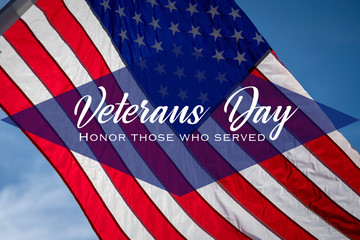 A Veteran's Day illustration with American flag and salutation