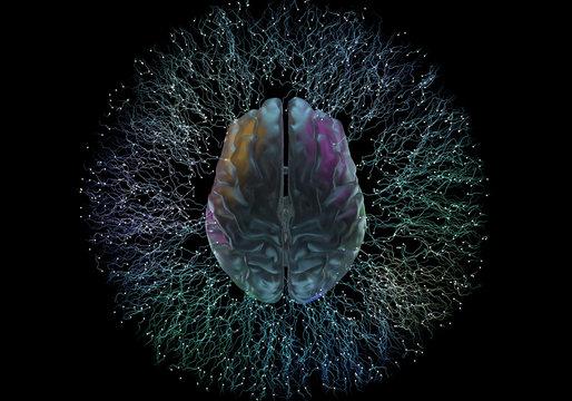 Artificial Intelligence Brain Neuroscience