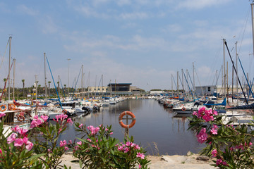 Marina de las Dunas Guardamar del Segura Spain with boats and yachts and pink flowers