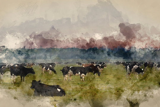 Digital watercolor painting of Cattle in field during misty sunrise in English countryside