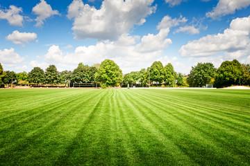 soccer field in summer park. Fototapete