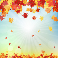 Fall (Autumn) Background