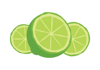 Sliced green lime icon vector. Halved lemon vector. Lemon isolated on a white background. Lemon slice icon. Green lime vector