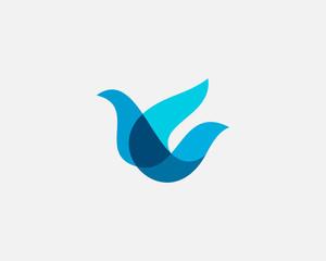Bird logo design abstract modern colorful style illustration. Dove freedom vector icon symbol identity logotype
