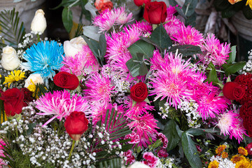 Colorful Floral Background of Mixed Flowers