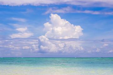 真夏の海、南国の風