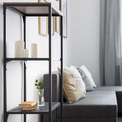 Simple bookshelf and sofa