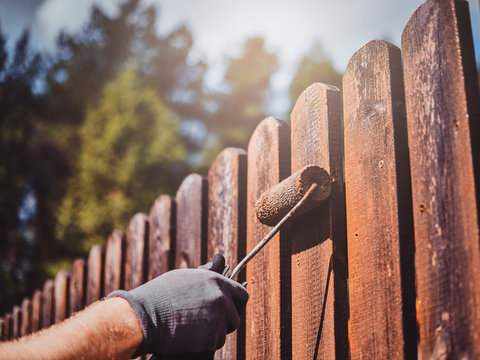 Man in protective gloves is painting wooden fence in bright summer day.