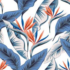 Tropical strelitzia flowers, blue banana palm leaves, white background. Vector seamless pattern. Jungle foliage illustration. Exotic plants. Summer beach floral design. Paradise nature