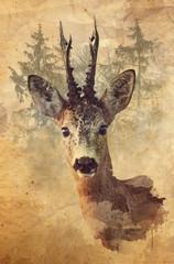 Digital watercolor painting of Roe Deer buck.