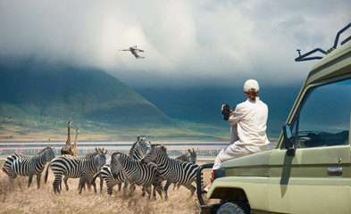 Woman tourist on safari-tour in Africa, traveling by car in Tanzania, watching wild animals and birds in the National park Ngorongoro Wall mural