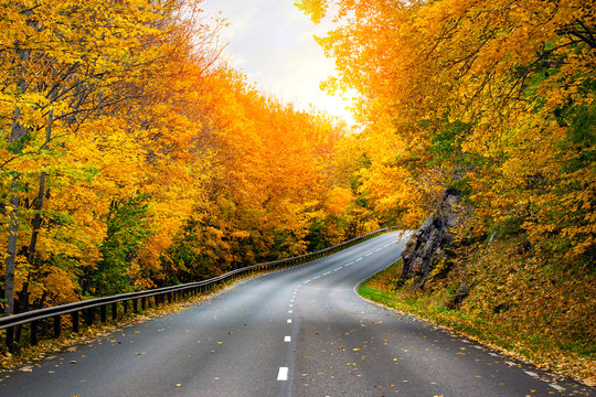 Fall scenic road in Sweden