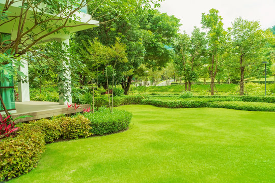 Modern house with beautiful landscaped front yard, Lawn and garden, Green lawn, Landscape formal, Front yard is beautifully designed garden., Design background.