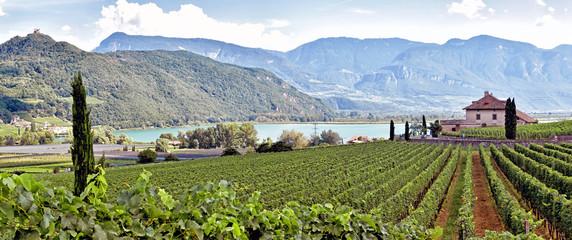 Kalterer See - Südtirol
