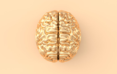 3d brain rendering illustration template background. The concept of intelligence, brainstorm, creative idea, human mind, artificial intelligence. Top view