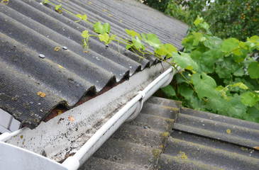 Guttering. Wet asbestos house roof and plastic rain gutter pipeline