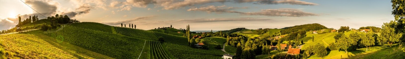 Panorama view of Vineyards in summer in south Styria, Austria tourist spot, travel destination.